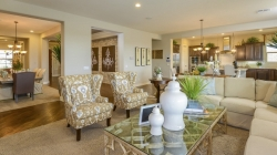 New Taylor Morrison Collection of Homes Debuts at Reserve at Norterra in North Phoenix