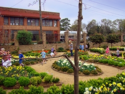 WK Dickson's Award Winning Study Shows the Viability of Rainwater Harvesting in a Small NC Town