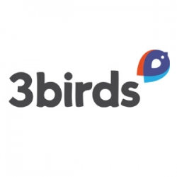 3 Birds Launches New Website Built on Its Own Responsive Website Platform: That and Other Platform Upgrades to be Introduced at NADA 2014