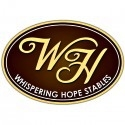 Raleigh�s Top Dressage Trainer and Whispering Hope Stables High Ranking Horses
