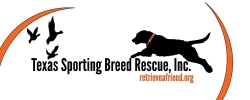 Texas Sporting Breed Rescue, Inc. Selected as 2014 Bird Dog Jamboree Benefactor