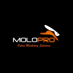 Molopro's President, Alejandro Delbrey, Announces New Website and Services