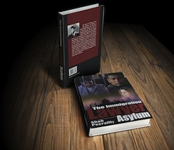 """Immigration Lawyer Shah Peerally Emerging as a Book Author with His Inspirational Legal Fiction, """"The Immigration Lawyer Asylum"""""""