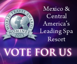 Casa Dorada Los Cabos Nominated as Mexico and Central America's Leading Beach Resort at World Travel Awards 2014