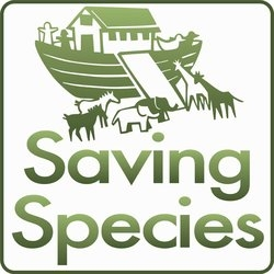 Current Species Loss 1000 Times Higher Than Normal, Say SavingSpecies Scientists
