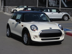 This Summer, Surrogate Alternatives, Inc. (SAI) is Celebrating Their 16th Birthday and Will be Awarding One Lucky Surrogate Mother with a Brand New 2014 Mini Cooper