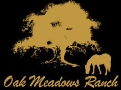 Oak Meadows Ranch is Proud to Announce Equine Therapy is Now Available