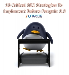 Ignite Visibility Announces SEO Advice on Google Penguin 3 Update