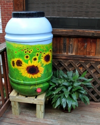 The Rain Barrel: Some Things Old, Become New Again
