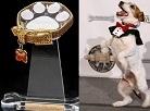 Golden Collar Awards Creator and Pet-Friendly Companies to Create Life Saving Programs