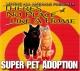 Loving All Animals, Inc.