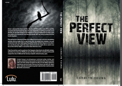 """""""The Perfect View"""" Has Been Released! A Psychological Suspense Novel by Carolyn Young"""