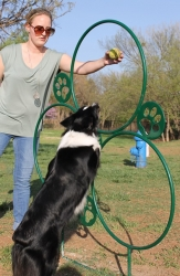 Noah's Park & Playgrounds Brings Agility to Pets and Pet Owners at the Edmond Dog Park