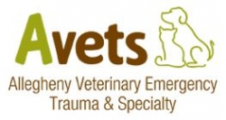 Avets Receives VECCS Certification as Level I Veterinary Emergency and Critical Care Facility