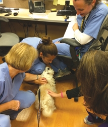President of TFI Envision Participates in Service & Assistance Dog Appreciation Day on August 1st