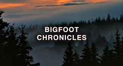Five-Year Battle to Get Bigfoot Movie Released Has Big Payoff