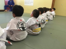 Brooklyn Brazilian Jiu-Jitsu Martial Arts Schools Are Revving Up to Get Kids Ready for Back to School