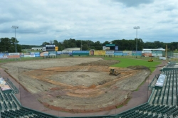 Face-Lift for the Delmarva Shorebirds