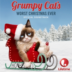 Grumpy Cat's Debut Picture-Vinyl Release Launches with PledgeMusic