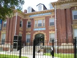 Chicago Baptist Institute - a Historical Landmark in Bronzeville /Washington Park for Sale for $15 Million