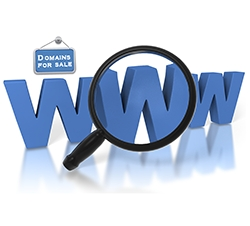 Get Premium Quality Expired Domains from DNmark.com