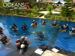 PADI Master Scuba Instructor Trainer Course at Oceans 5 Gili Air