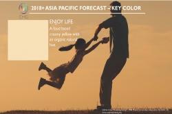 Color Marketing Group Announces 2018+ Asia Pacific Key Color - Enjoy Life