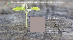 Color Marketing Group Announces 2018+ North American Key Color - Evolve