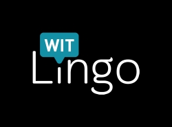 Witlingo Launching the Motley Fool on Google Home