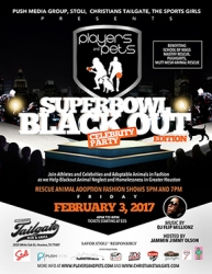 Push Media Group, The Sports Girls, Christians Tailgate Houston Present Players and Pets Blackout Super Bowl Edition Rescue Adoption Fashion Show and Celebrity Party