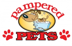 Pampered Pets Pet Groomer Announces Grand Opening in Brainerd, MN Offering Premium Grooming at Affordable Prices