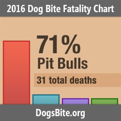 Nonprofit Releases 2016 Dog Bite Fatality Statistics and Trends from 12-Year Dog Bite Fatality Data Set (2005 to 2016)