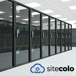 SiteColo Improves Web Hosting with Revolutionary New Artificial Intelligence