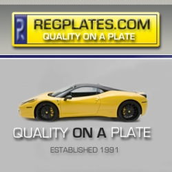 Reg Plates Increase in Popularity Over the Years from Regplates.com