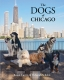 The Dogs of Chicago