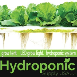 Online Hydroponics Store Continues to Grow and Expand Publishing Content