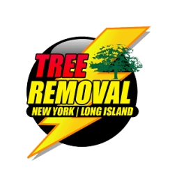 New York Long Island Tree Service Begins Trimming Trees Over Nassau and Suffolk Counties