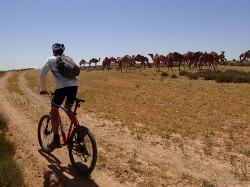 SpiceRoads Cycling Launches Adventure Biking Tours in Jordan and Israel
