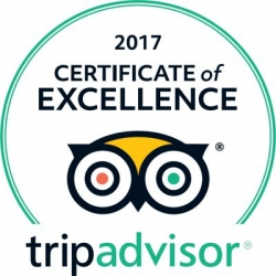 Resort in Los Cabos Earns 2017 TripAdvisor Certificate of Excellence