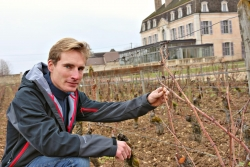 Château de Pommard Welcomes New Assistant Winemaker