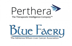 Perthera Inc. and Blue Faery Announce Their Partnership Against Liver Cancer