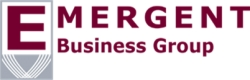 Emergent Business Group Launches Next-Generation Debt Collection Company to Service Record Levels of Consumer Debt