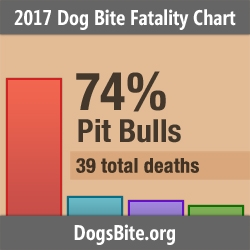 Nonprofit Releases 2017 Dog Bite Fatality Statistics and Trends from 13-Year Fatality Data Set (2005 to 2017)