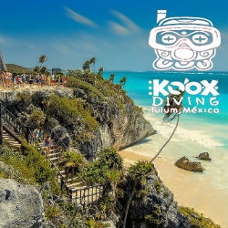 Mexico Tourism: The Most Thrilling Destinations and Attractions Recommended by Koox Diving