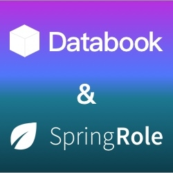 Announcing Databook & SpringRole Partnership