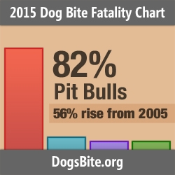 DogsBite.org Releases 2015 Dog Bite Fatality Statistics; Percentage of Deaths Attributed to Pit Bulls Rises to 82% and Other Trends