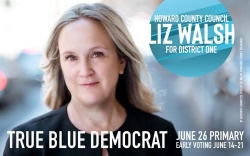 Howard County District 1 Candidate Liz Walsh Proposes Legislative Plan of Action in Response to Repeat Flooding