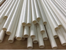 True Green Enterprises Announces Competitively Priced Tree Free Paper Straws