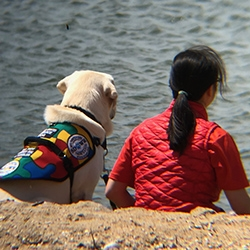 Autism Service Dog to Help 17-Year-Old Girl in Madison, CT