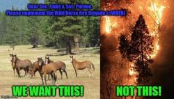 Catastrophic Wildfire and Toxic Smoke Evolved From Ecological Imbalance: Are DOI Secretary Zinke / USDA Secretary Purdue Ignoring Cost-Effective Wildfire Solution?